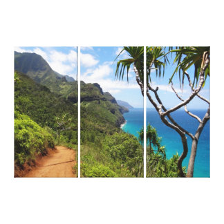 Canvas Art-Kauai Coast