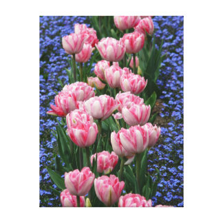 Canvas Art-Pink Tulips