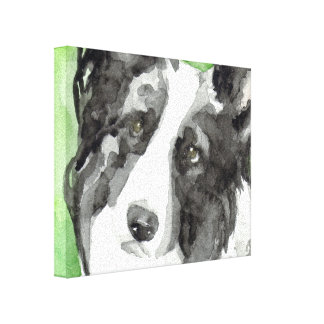 Canvas Dog Art With Border Collie