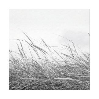 Canvas - dune grasses