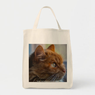 Canvas Grocery Bag, Main Coon adoption cat Tote Bag