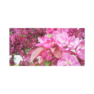 Canvas PIcture of Cherry Blossom