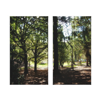 Canvas Print - A Walk in the Forest