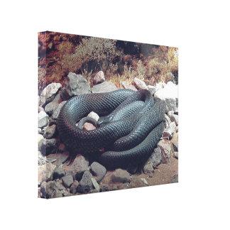 Canvas Print - Australian Taipan Snake