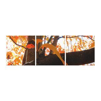 Canvas Print - Autumn Glory