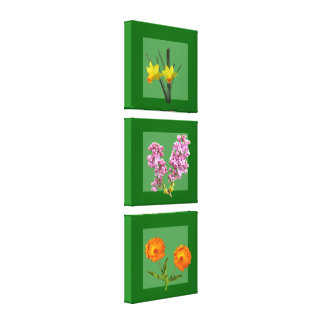 Canvas Print - Botanical Triptych