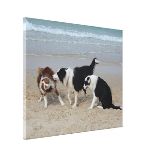 Canvas Print - Doggie Fun