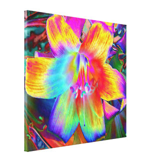 Canvas Print - Rainbow Lilly