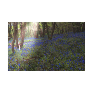 Canvas Print Sunbeam through the Wood
