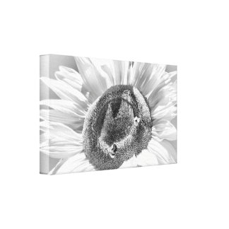 Canvas - sunflower with bumblebees
