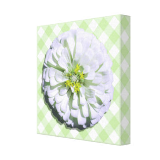 Canvas - Wrapped - Lemony White Zinnia on Lattice