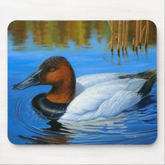 Canvasback Duck - Mouse Pad