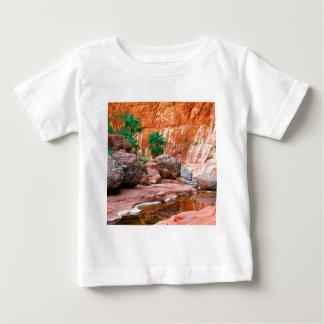 Canyon Hidden Oasis El Cajon Baja Mexico Baby T-Shirt
