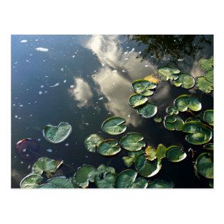Canyon Lakes Postcard