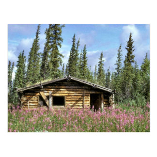 Canyon Village log cabin Postcard