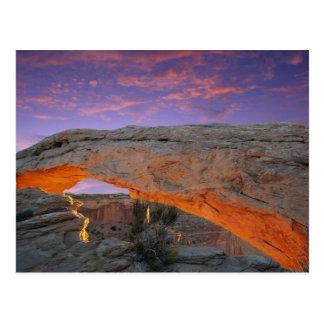 Canyonlands National Park, Utah Postcard