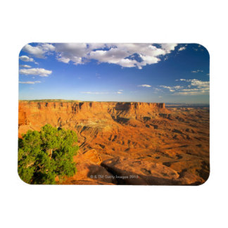 Canyonlands National Park, Utah, United States Magnet