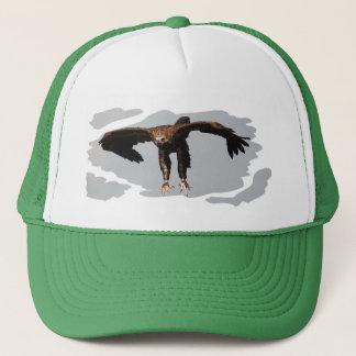 Cap Monk Vulture - Black Vulture - monk vulture