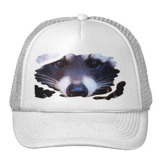 Cap RACOON RACCOON - photo: Jean Louis Glineur Trucker Hat
