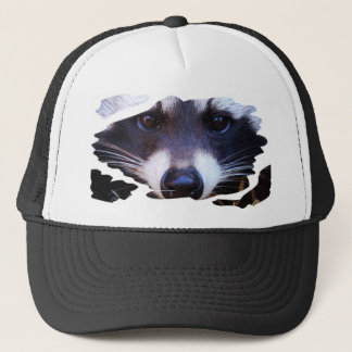 Cap RACOON RACCOON RATON LAVEUR photo JL Glineur
