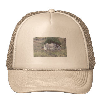 Cap Zebra Trucker Hat
