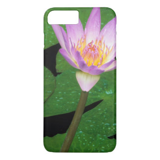 Cape Blue Water Lily (Nymphaea Capensis) iPhone 7 Plus Case