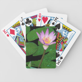 Cape Blue Water Lily (Nymphaea Capensis) Poker Deck
