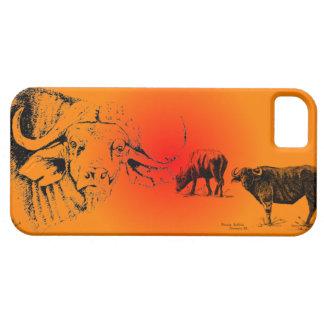 Cape Buffalos at sunset  Iphone case