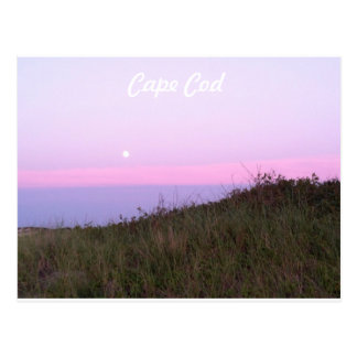 Cape Cod Beach Postcard