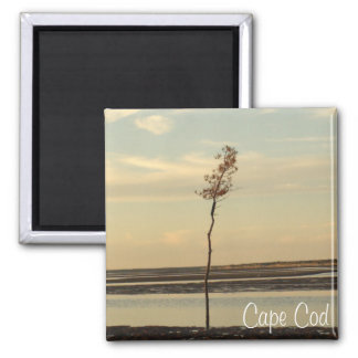 Cape Cod Beach Relaxing Sunset Photo Magnet