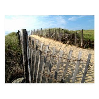 Cape Cod Dunes Postcard