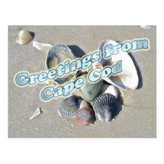 Cape Cod Massachusetts - Shell & Surf Postcard