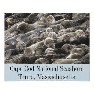 Cape Cod National Seashore- Truro Poster