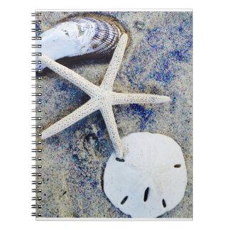 Cape Cod Sea Shell note book