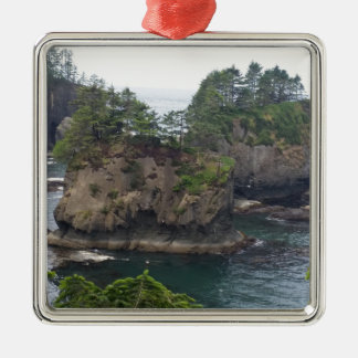 Cape Flattery Metal Ornament