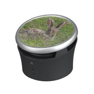 Cape Hare, Ngorongoro Conservation Area, Arusha Bluetooth Speaker
