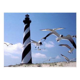 Cape Hatteras Lighthouse North Carolina lighthouse Postcard