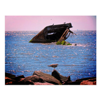 Cape May Shipwreck Postcard