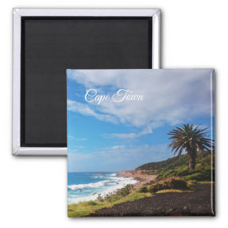 Cape Town Palm Beach Landscape Magnet