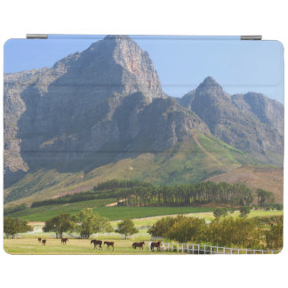 Cape Town, Western Cape, South Africa iPad Cover