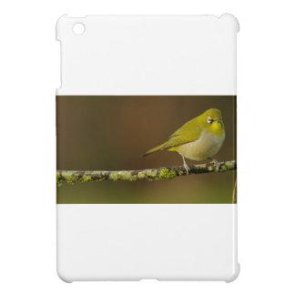 Cape White-Eye Bird Perched iPad Mini Cover
