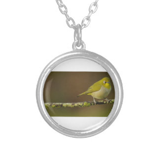 Cape White-Eye Bird Perched Silver Plated Necklace