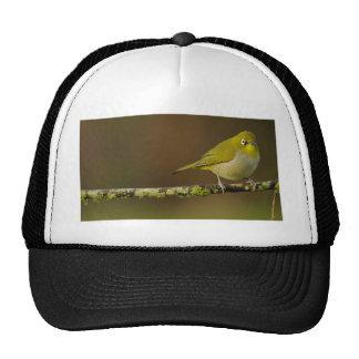 Cape White-Eye Bird Perched Trucker Hat