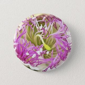 Caper Flower Blossom 2 Inch Round Button