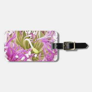 Caper Flower Blossom Luggage Tag