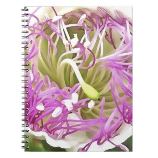 Caper Flower Blossom Notebook
