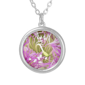 Caper Flower Blossom Silver Plated Necklace