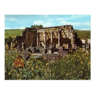 Capernaum, Galilee,, Early Synagogue Post Cards