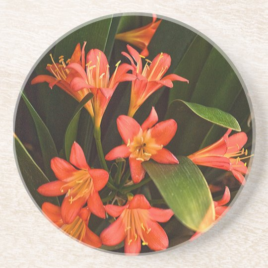 Capetown Flowers Coaster