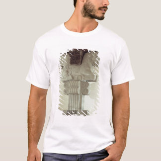 Capital in the Persian style T-Shirt